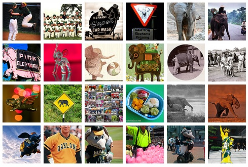 Flickr Faves Elephants